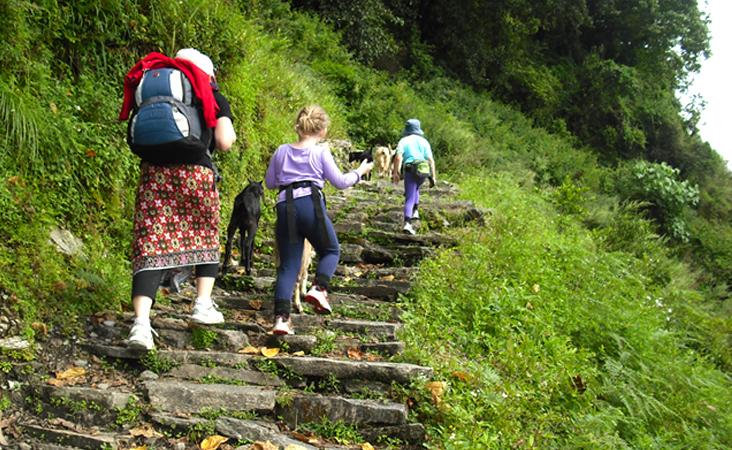 Annapurna Base Camp Trek for kids