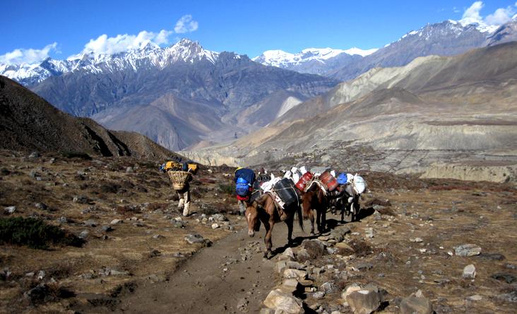 Jomsom Muktinath Trekking