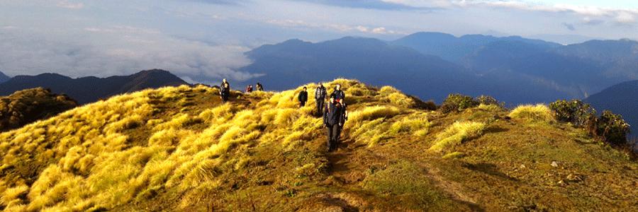 Mardi-Himal-trails
