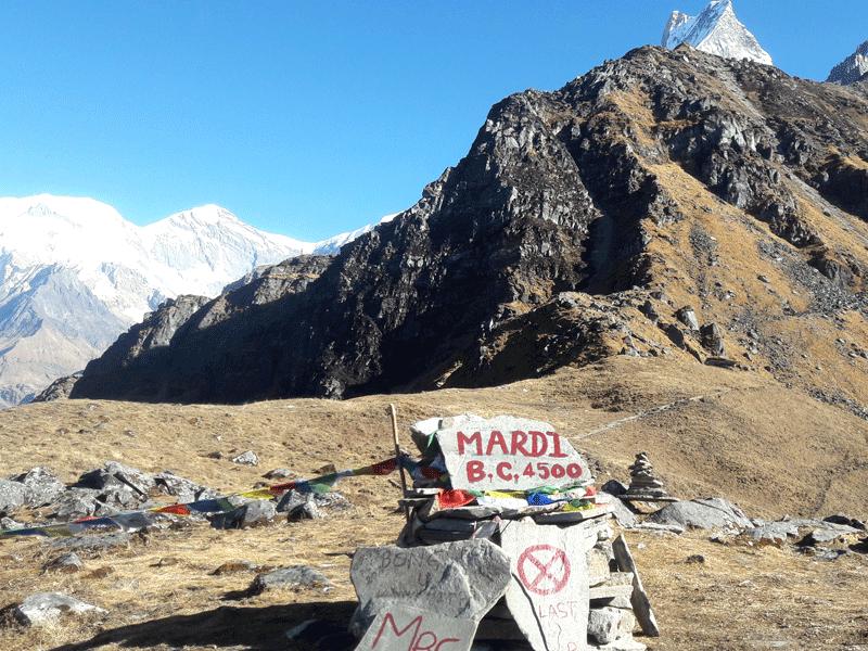 Mardi Base Camp